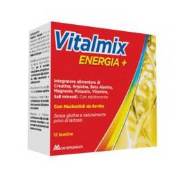 VITALMIX ENERGIA + 12...