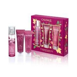 CAUDALIE COFANETTO THE DES...