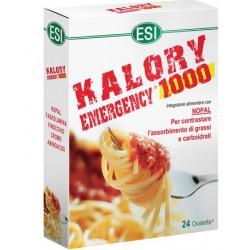 ESI KALORY EMERGENCY 1000 24OV